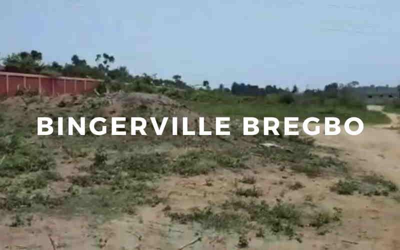 Bingerville Bregbo